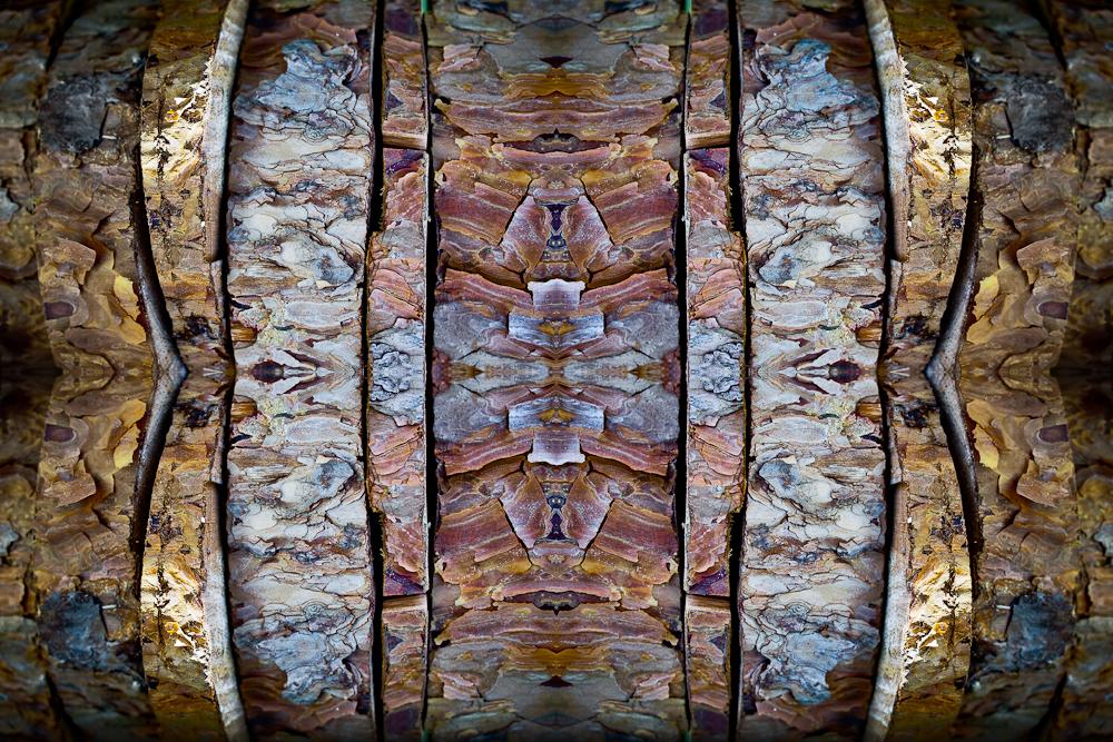 spiegel-11